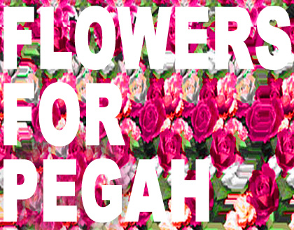 Flowers_for_pegah_2